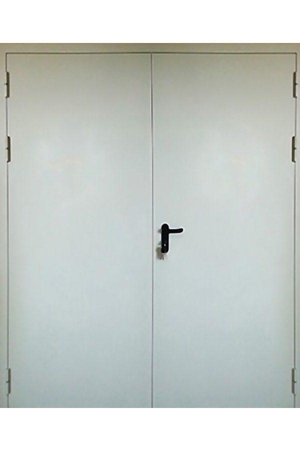 Техническая двупольная дверь от компании Комфорт-Сервис